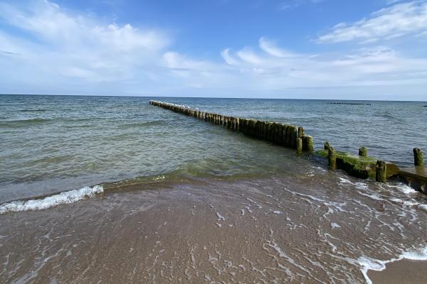 Morze w ustroniu morskim
